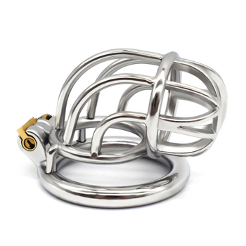 Curved stainless steel male Chastity Device Cock Cage SM game adult penis ring  Lock Bondage Adult Products Sex Toy male steel chastity belt with y wire cb6000 cock cage chastity device male stainless steel pants adult sex toys for men bondage