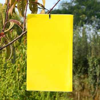 30 Pack Dual-Sided Yellow Sticky Traps For Flying Plant Insect (10x4 Inch, Included 30pcs Twist Ties) U90A
