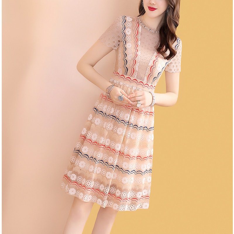 Embroidered Hollow Out Lace Slim Dress Women's Spring And Summer Mid-length 2019 New Style Popular Skirt New Products