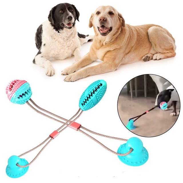 Dog Molar Bite Toy Multifunction Pet Chew Toys with Suction Cup Doggy Pull Ball for Dogs Cats Cleaning Tooth Food Dispenser NEW 1