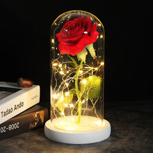 Beauty And The Beast Rose LED Enchanted Galaxy Rose Eternal Flower Lights In Dome For Christmas Mother's Valentine's Day Gift