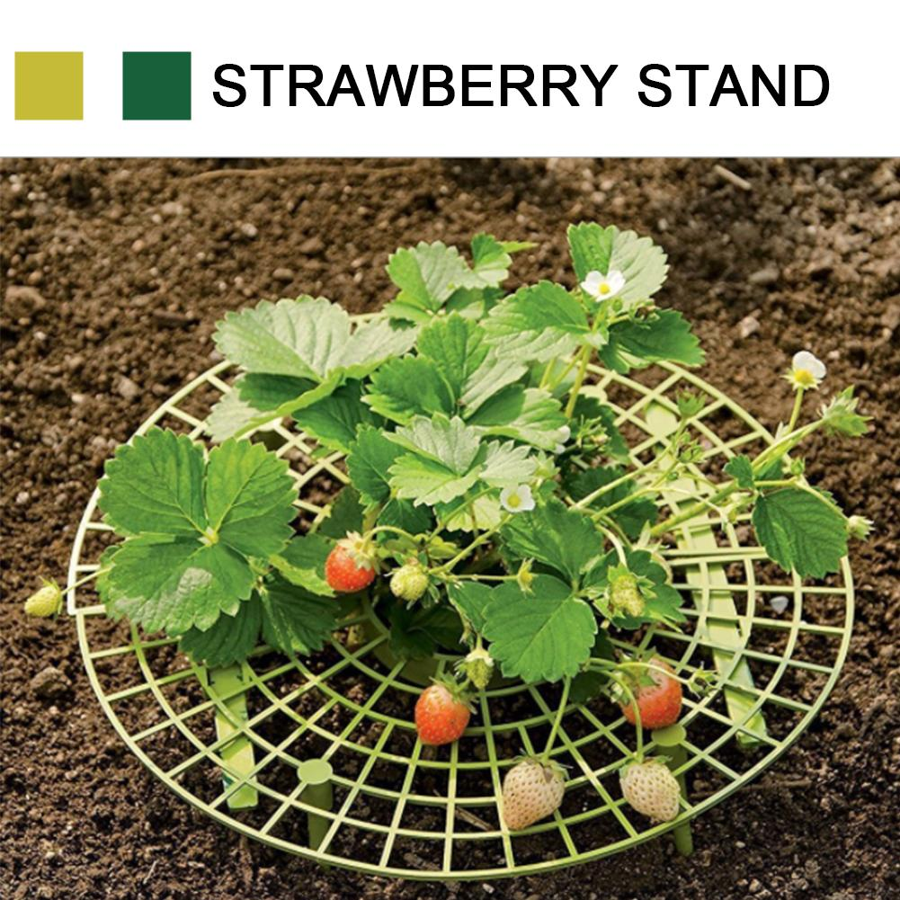 10PCS Strawberry Frame Holder Balcony Planting Rack Fruit Support Plant Flower Climbing Vine Pillar Gardening Stand|Plant Cages & Supports| |  - title=