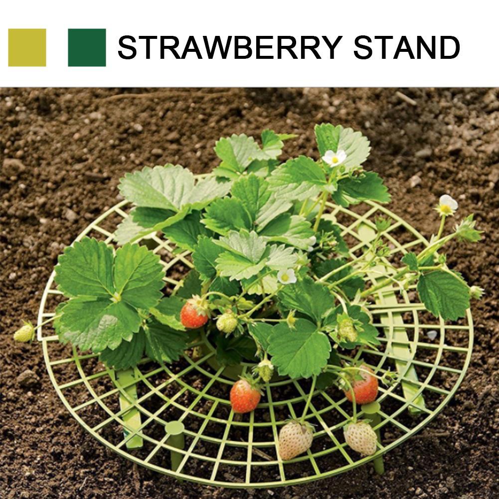 10PCS Strawberry Frame Holder Balcony Planting Rack Fruit Support Plant Flower Climbing Vine Pillar Gardening Stand
