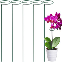 Plant-Support-Stand Backyard Stakes Garden-Tool 1PC Metal Beautiful Single-Flowers