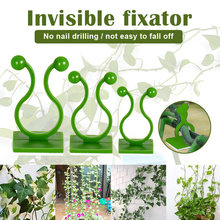Invisible vine, green plant, traceless climbing, nail free wall, green herb, wall climbing artifact, wall fixing device