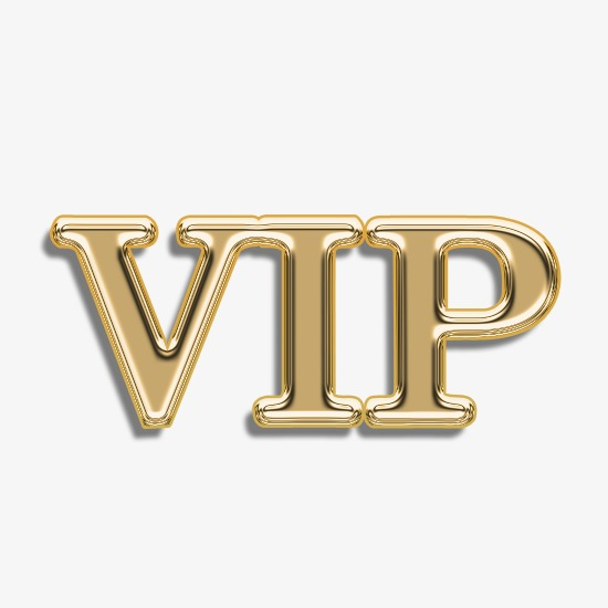 VIP Link Magnetic Child Lock