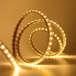 Image 2 - 220V LED Light Strip 3014 SMD Waterproof 120LEDs/m Outdoor Rope LED Strip Light White/Warm White/Blue EU Power Switch plug