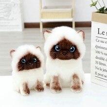 20/26cm simulação bonito siamês gato brinquedo de pelúcia azul lantejoulas olhos gatos boneca marrom e branco rosto ragdoll gato decoração para casa melhor presente