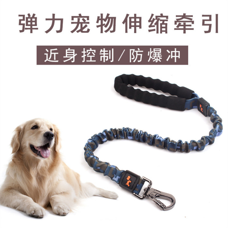 Hot Selling Elasticity Stretching Dog Chain Dog Hand Holding Rope Dog Rope Pet Supplies