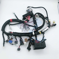 Internal Inside Wiring Harness 0004307 For Hitachi ZX360h 3G ZX330 1 ZAX330 1 Excavator