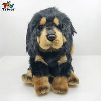 Lifelike Tibetan Mastiff Black Dog Puppy Plush Toy Triver Stuffed Animal Doll Baby Kids Boy Birthday Gift Home Shop Decor
