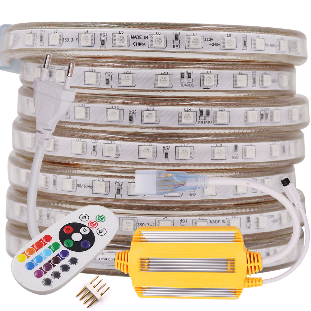 220V RGB LED Strip Light Dimmable Waterproof 5050 60 LEDs/m Flexible Ribbon Tape LED Strip Lamp With 24 Key IR Remote