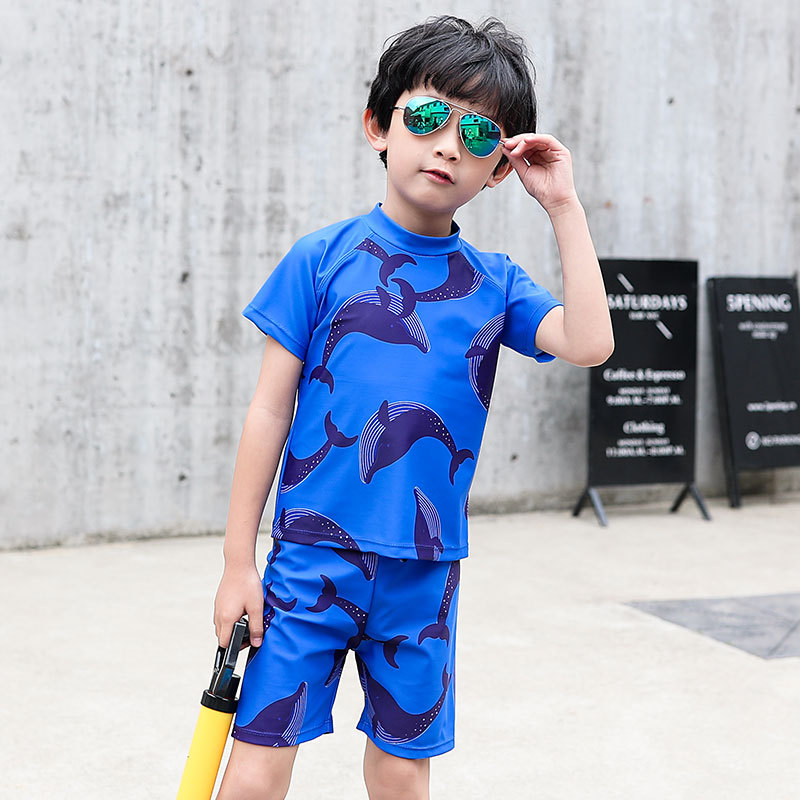 2019 New Style Hot Sales CHILDREN'S Swimwear Split Short Sleeve Shorts Handsome Cartoon Dolphin Hot Springs Ultra-stretch BOY'S