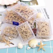 1 Box Natural Starfish Seashell Beach Craft Natural Sea Stars DIY Beach Wedding Decoration Crafts Home Decor Epoxy 1-5cm cheap Ywbeads CN(Origin) Love Organic Material MEDITERRANEAN