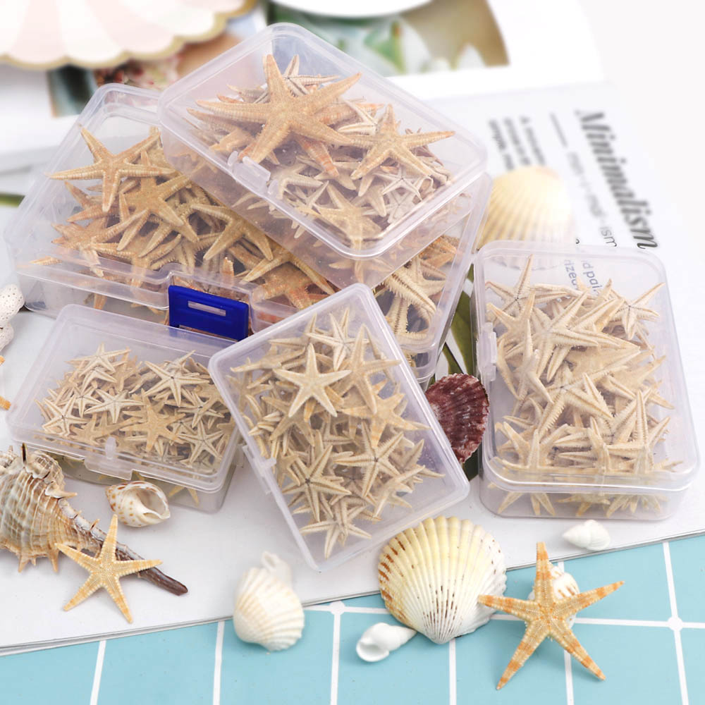 1 Box Natural Starfish Seashell Beach Craft Natural Sea Stars DIY Beach Wedding Decoration Crafts Home Decor Epoxy 1-5cm