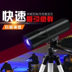 Nocne oświetlenie do wędkowania Ningbo oświetlenie turystyczne do źródła podwójne światło lampa wędkarska dostawa towarów oświetlenie do wędkowania 10W w Reflektory od Lampy i oświetlenie na