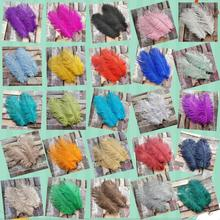 도매! 높은 품질 500pcs 화려한 31 색 자연 타조 깃털 6 8 inches/15 20 cm DIY 웨딩 파티 장식