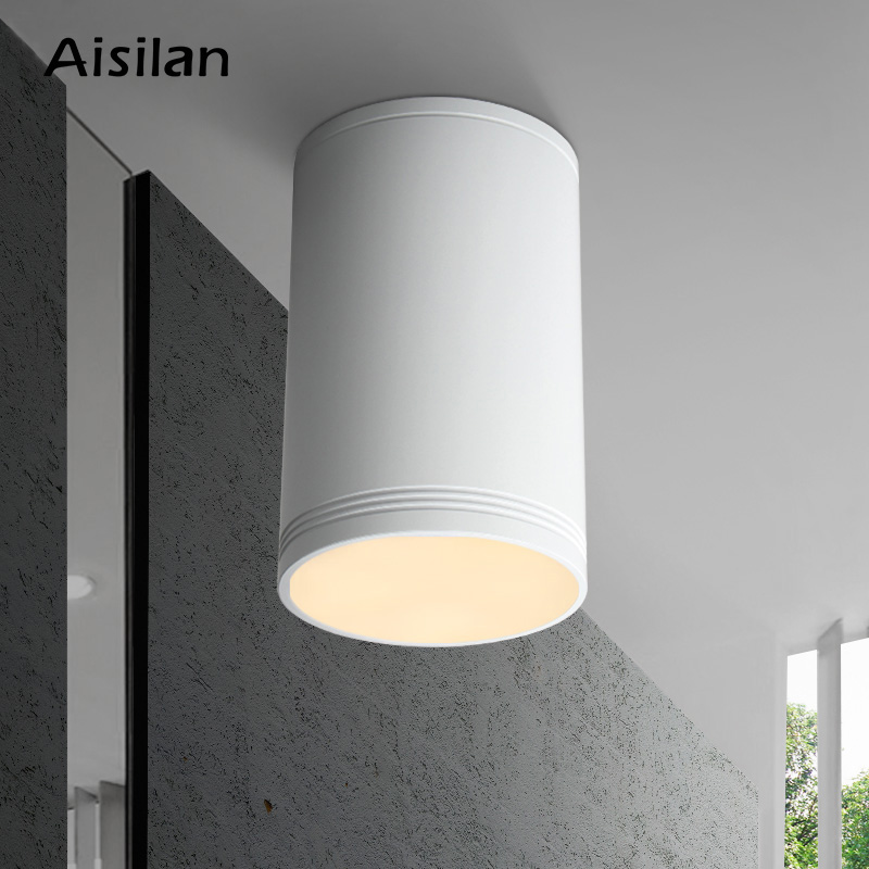 Aisilan LED Downlight Minimalist Modern Style Surface Mounted Ceiling Lamp For Living Room Bedroom Hallway Kitchen AC85-260V  7W