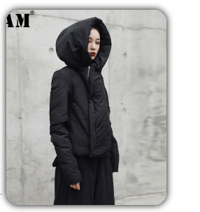 H7000b2620b29493083997aa41390efd4h [EAM] 2019 New Spring Black Full Batwing Sleeve Turtleneck Collar Pullover Loose Irregular Women Fashion Tide Coat OA869