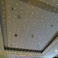 Factory Direct Selling New Style 24V Low Voltage Lighting Chain Holiday Wedding Decorative And Engineering Lighting Only 100 M C