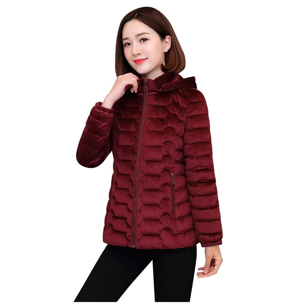 New Spring Autumn Women's   Jackets   Clothing Hooded Fleece   Basic     Jackets   Long Sleeve female Coats Short Zipper Casual Outerwear 40