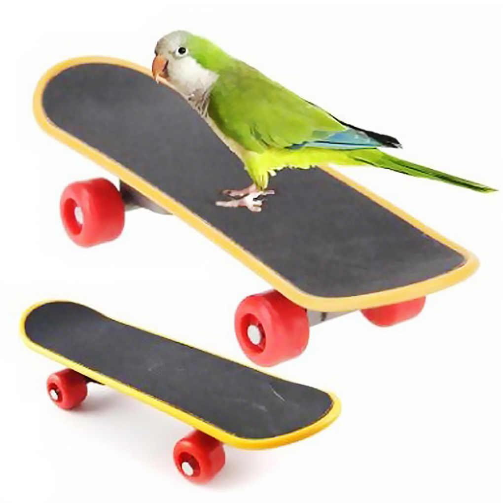 Burung PET Persediaan Hewan Peliharaan Kecerdasan Kaki-Talon Mainan Pelatihan Mini Skateboard Berdiri Perch untuk Burung Beo Pola Acak