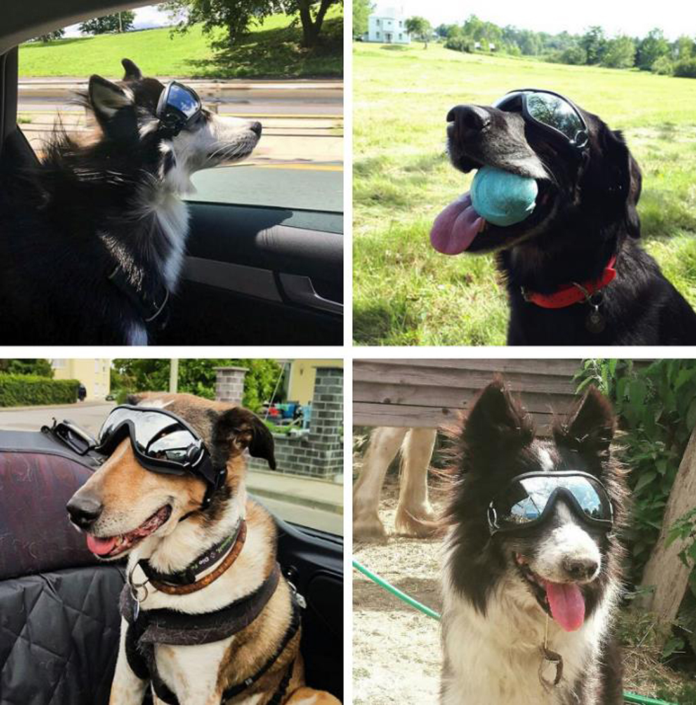2020 HOT Adjustable Pet Dog Goggles Sunglasses Anti-UV Sun Glasses Eye Wear Protection Waterproof Sunglasses Pet Dog Supplies 9