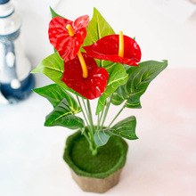 Fake Flower Ornament Floral-Decor Anthurium Office Plastic Artificial Home 12-Head