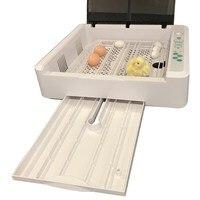 Best Farm Egg Incubator Automatic 36 Egg Hatchery Machine Newest Temperature Humidity Control Chicken Duck Quail Bird Brooder