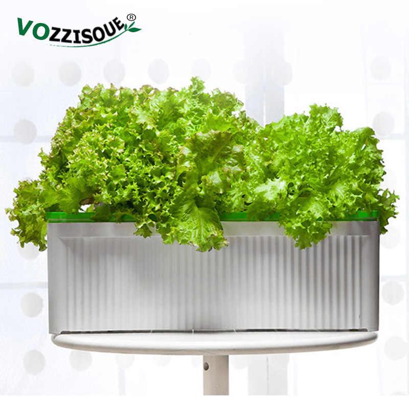 Indoor Garden Plant Site Hydroponic
