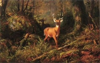 Oil painting arthur-fitzwilliam-tait-the-adirondacks deer in forest landscape