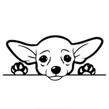 Симпатичные Чихуахуа стикер на машину с собакой внешние аксессуары