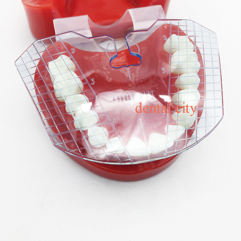 1pcs dental lab dental guide plate teeth arrangement on denture work Dental equipment
