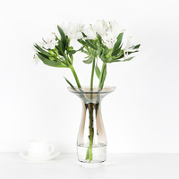 Wide Mouth Drop Shape Transparent Glass Vase Flower Arrangement Hydroponics Green Plant Desktop Decoration Decorative Home Vase