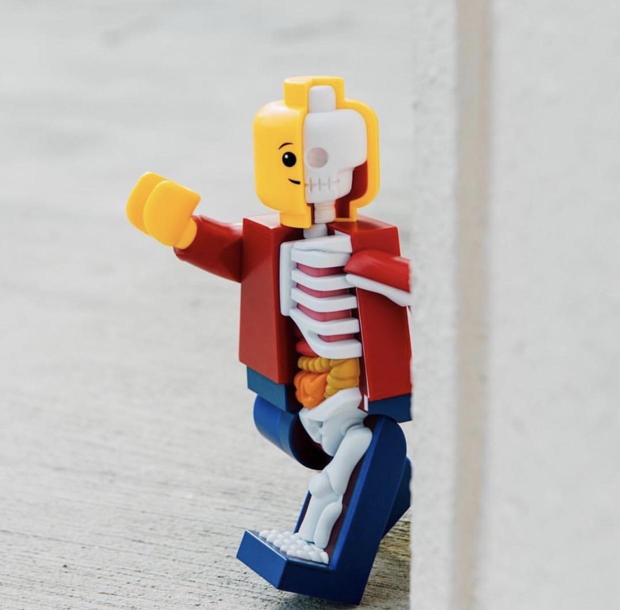Big Micro Anatomic XXRAY JASON FREENY Brick Man 11 Inch With Movable Joints