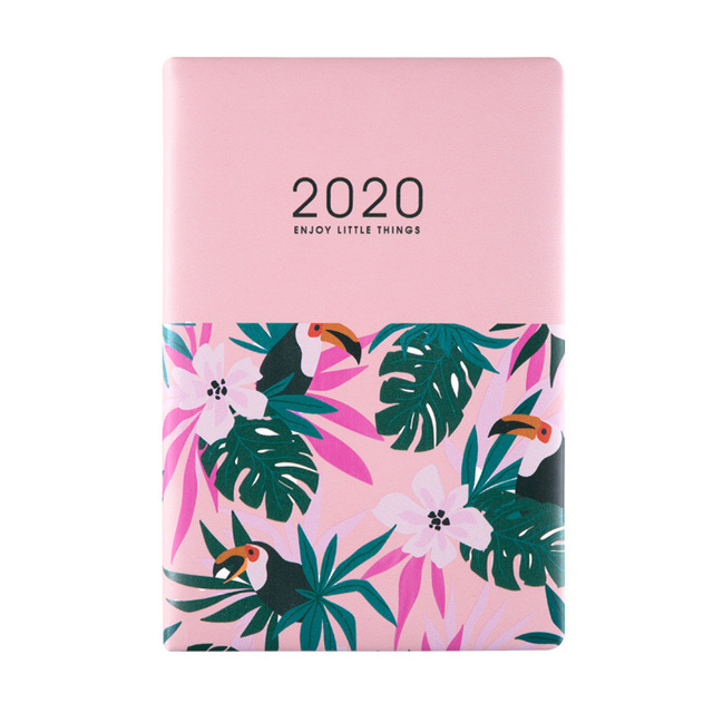 Agenda 2020 Planner Organizer Kawaii A5 Diary Notebook and Journal Weekly Monthly Notebook Wonderful Back to School Travel Book 5