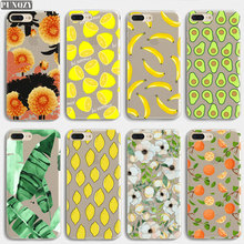 Summer Tropical plants Fruit avocado cactus cat art phone Case For iPhone 11 PRO MAX XR XS MAX 7 6S 8 Plus 4 4S 5S SE X TPU Case