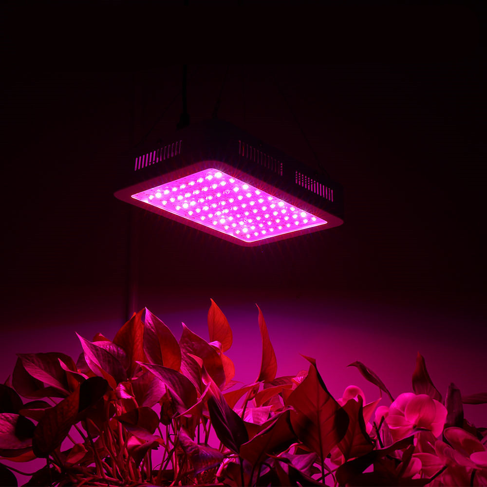 Professional Plant Lamp Double Chips Greenhouse Plants Growth Uv Ir Led Grow Light 1000w - 2