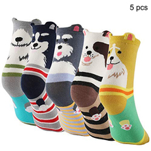 5 Pairs High quality womens lovely cartoon socks autumn winter funny animal fashion ladies and women cute cotton dog sock