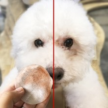 100pcs Dog Eye Cleaning Towels Pet Wet Wipes Cat Tear Stain Remover Gentle Non-intivating Grooming Supplies