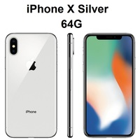 Silver 64G
