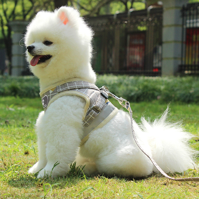 Hot Selling Pet Harness Reflective Breathable Strap Pet Supplies Vest Style Cat Dog Hand Holding Rope