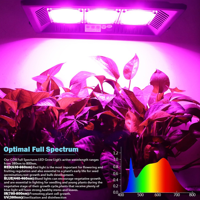 Led Plant Growth Lamp Fill Light Full Spectrum Vegetable Planting COB High Power Waterproof 300W Flood Light Growing Lamp