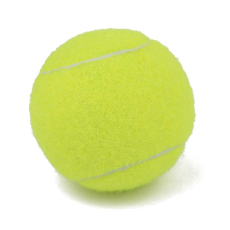2pcs Professional Reinforced Rubber Tennis Ball Shock Absorber High Elasticity Durable Training Ball For Club School Training