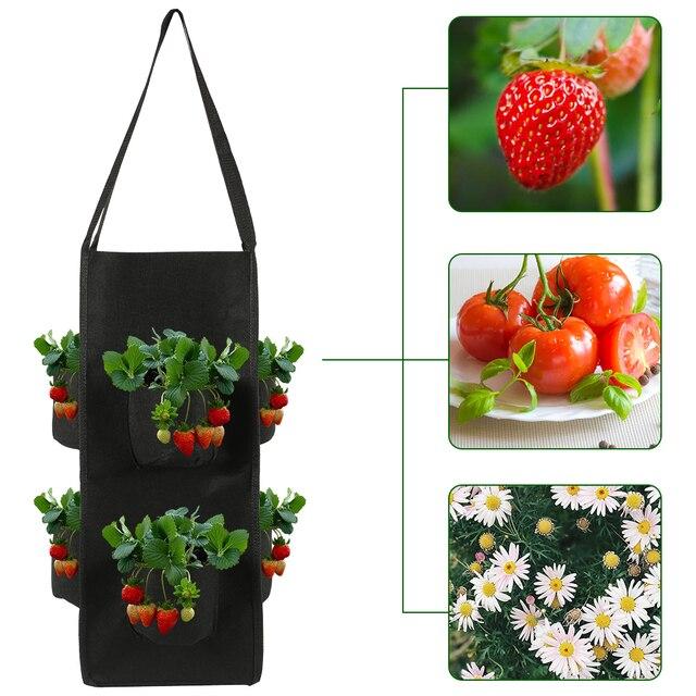 Strawberry planting growing bag 10