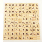 Educational Wooden T...