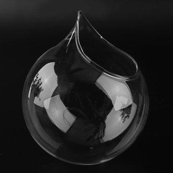 Kreatywny przezroczysty wazon szkło borokrzemianowe ściany wiszące akwarium wyczyść wazon domu dekoracyjne Oranment tanie i dobre opinie CN (pochodzenie) CLASSIC Szklane i kryształowe Wazon na stolik Vase