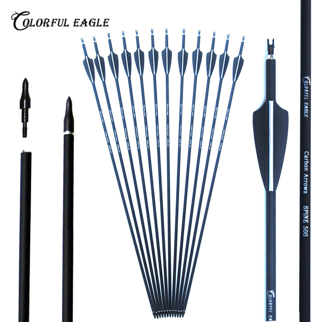 6/12/24pc 28/30/31inch 500 spine Archery Carbon Arrow Replaceable Arrow Head Archery for Compound/Recurve Bow Hunting & Practice 1