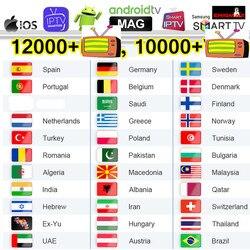 4K Iptv Швеция Смарт Iptv подписка M3U список Германия арабский Польша греческий Iptv Испания Португалия Бельгия Канада Чешский EX-YU Ip Tv