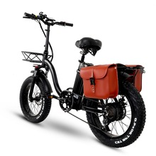 Y20 Folding E-bike Snow Bike, 750W Motor, 48V 15A/20A/24A Battery, 20 Inch Mountain Bike Fat Bike, Pedal Assist Bike with Basket
